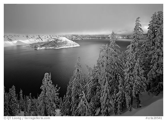 Conifers, Lake and Wizard Island, winter sunrise. Crater Lake National Park (black and white)
