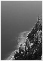 Pine trees and blue waters. Crater Lake National Park ( black and white)