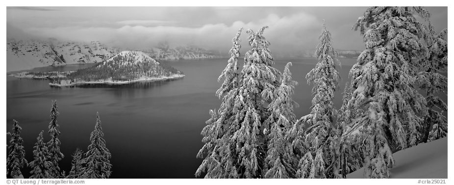 Snowy trees, lake, and Wizard Island. Crater Lake National Park (black and white)