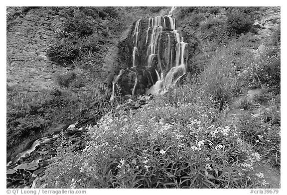 Vidae Falls and stream. Crater Lake National Park (black and white)