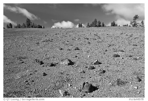 Pumice plain. Crater Lake National Park (black and white)
