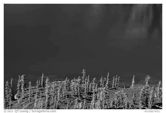 Hemlock trees on lava rocks bordering blue waters of Skell Channel, Wizard Island. Crater Lake National Park (black and white)