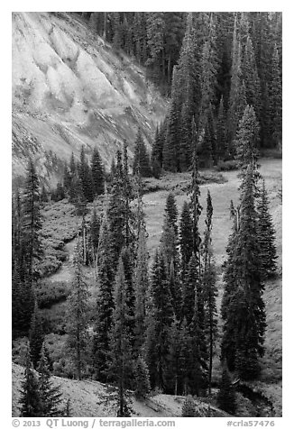 Godfrey Glen Meadow and ash cliffs. Crater Lake National Park (black and white)