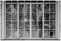 Forest, Steel Visitor Center window reflexion. Crater Lake National Park ( black and white)
