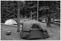 Mazama Village campground. Crater Lake National Park ( black and white)
