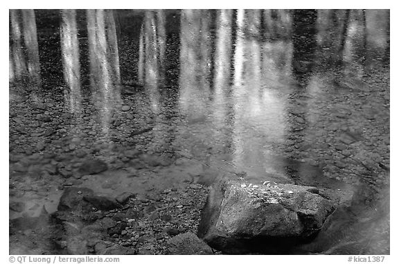 Reflections in Cedar Grove. Kings Canyon National Park (black and white)