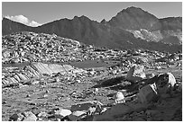 Deer, boulders, alpine lake, and mountains, Dusy Basin. Kings Canyon National Park ( black and white)