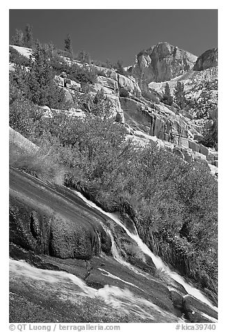Waterfall, wildflowers and mountains, Le Conte Canyon. Kings Canyon National Park (black and white)