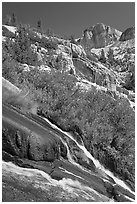 Waterfall, wildflowers and mountains, Le Conte Canyon. Kings Canyon National Park, California, USA. (black and white)