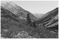 Looking south in Le Conte Canyon at dusk. Kings Canyon National Park, California, USA. (black and white)