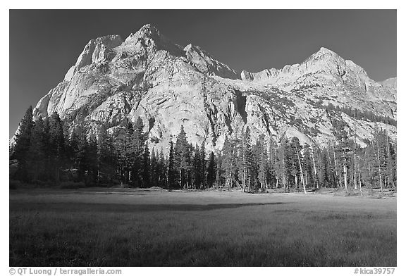 Langille Peak from Big Pete Meadow, morning, Le Conte Canyon. Kings Canyon National Park (black and white)