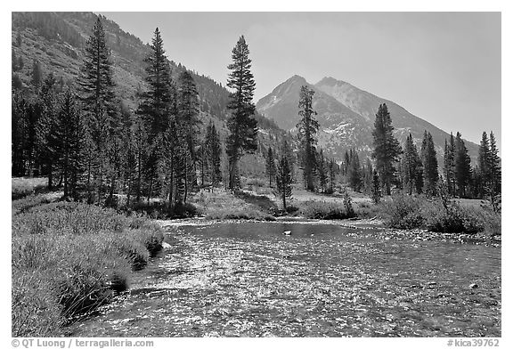 Glistening waters in middle Fork of the Kings River, Le Conte Canyon. Kings Canyon National Park (black and white)