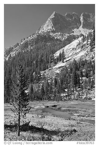 The Citadel rising above Le Conte Canyon. Kings Canyon National Park (black and white)