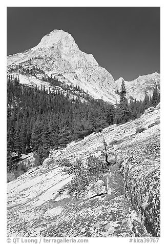 Langille Peak and Granite slab in Le Conte Canyon. Kings Canyon National Park (black and white)