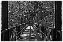 Suspension footbridge to Zumwalt Meadow. Kings Canyon National Park ( black and white)