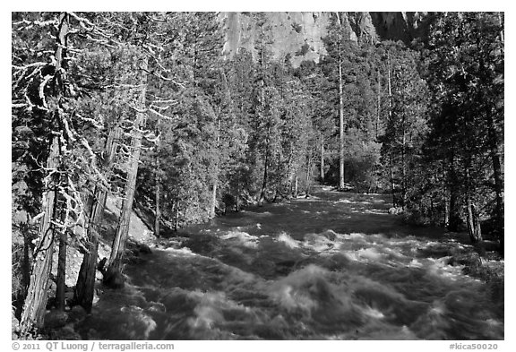 Roaring River in the spring. Kings Canyon National Park (black and white)