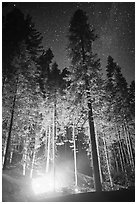 Fire amongst the sequoias, and starry sky. Kings Canyon National Park ( black and white)
