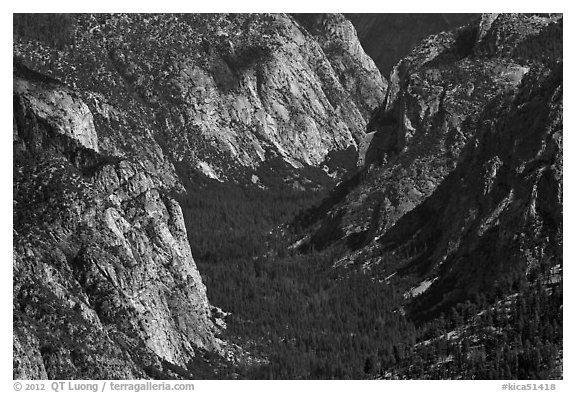 Valley carved by glaciers from above, Cedar Grove. Kings Canyon National Park (black and white)