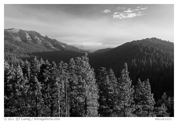 Redwood Mountain valley. Kings Canyon National Park (black and white)