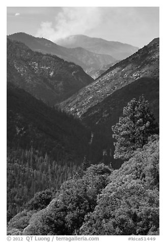 Valley carved by the Kings River. Kings Canyon National Park (black and white)