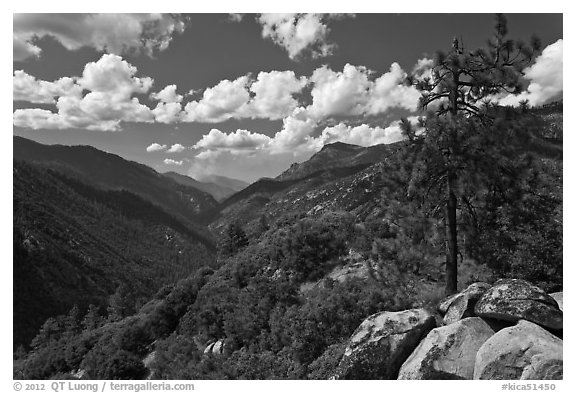 Canyon of the Kings River from Cedar Grove Overlook. Kings Canyon National Park (black and white)