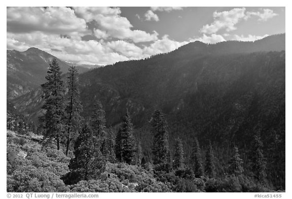 Cedar Grove valley seen from North Rim. Kings Canyon National Park (black and white)