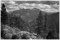 Peaks and trees from Cedar Grove rim. Kings Canyon National Park ( black and white)