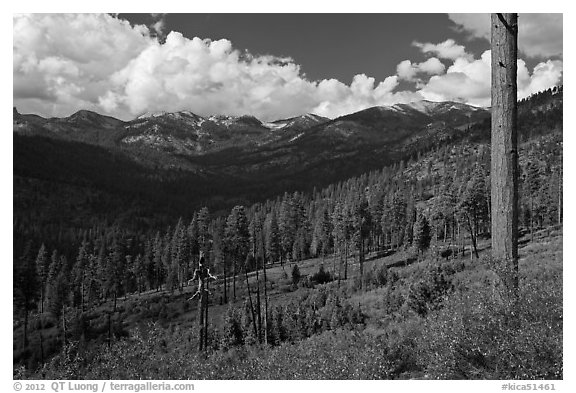 Monarch Divide. Kings Canyon National Park (black and white)