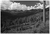 Monarch Divide. Kings Canyon National Park ( black and white)