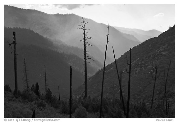 Backlit South Forks of the Kings River canyon. Kings Canyon National Park (black and white)