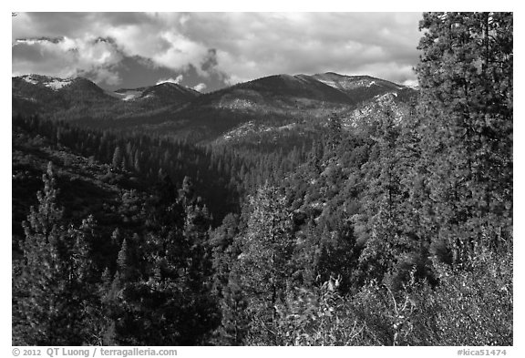 Kennedy Mountain above Lewis Creek. Kings Canyon National Park (black and white)