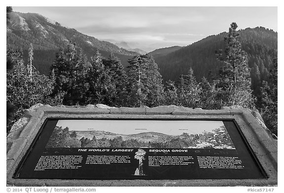 Interpretive sign, Redwood Mountain. Kings Canyon National Park (black and white)