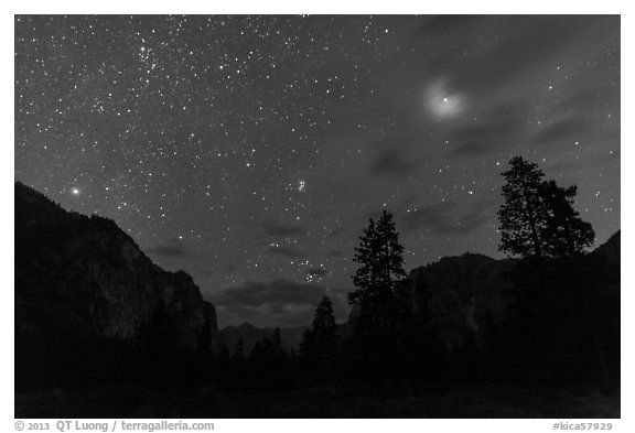 Trees and cliffs at night, Cedar Grove. Kings Canyon National Park (black and white)
