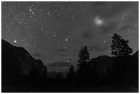Trees and cliffs at night, Cedar Grove. Kings Canyon National Park ( black and white)