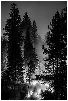 Control burn. Kings Canyon National Park ( black and white)