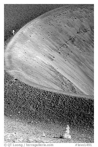 Pines and crater on top of Cinder cone, early morning. Lassen Volcanic National Park (black and white)