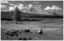 Painted dunes, pine tree, and Lassen Peak. Lassen Volcanic National Park ( black and white)