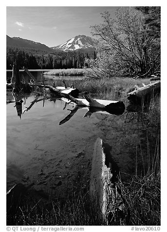 Manzanita Lake and Mount Lassen, morning spring. Lassen Volcanic National Park (black and white)
