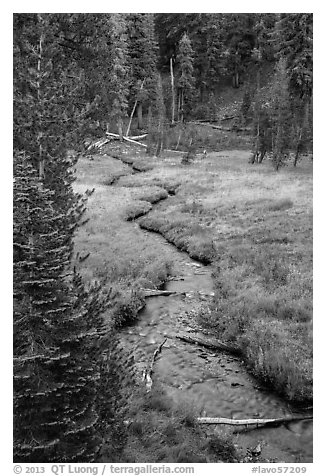 Kings Creek in meadow, late summer. Lassen Volcanic National Park (black and white)