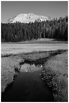 Lassen Peak reflected in Kings Creek stream. Lassen Volcanic National Park ( black and white)