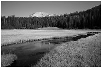 Upper Meadow and Lassen Peak, late summer. Lassen Volcanic National Park ( black and white)