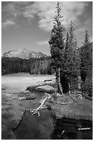 Kings Creek, meadow, and Lassen Peak. Lassen Volcanic National Park ( black and white)