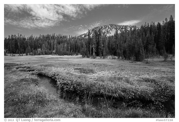 Upper Meadow with stream in late summer. Lassen Volcanic National Park (black and white)