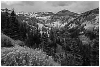 Little Hot Springs Valley. Lassen Volcanic National Park ( black and white)