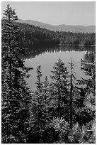 Juniper Lake from above. Lassen Volcanic National Park ( black and white)