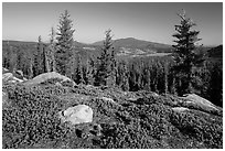 View from Inspiration Point. Lassen Volcanic National Park ( black and white)