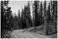 Gravel road. Lassen Volcanic National Park ( black and white)