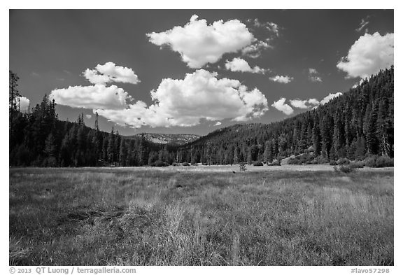 Drakesbad meadow, Warner Valley. Lassen Volcanic National Park (black and white)