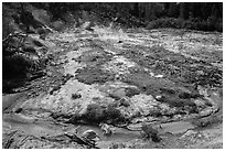 Stream and fumaroles, Devils Kitchen. Lassen Volcanic National Park ( black and white)