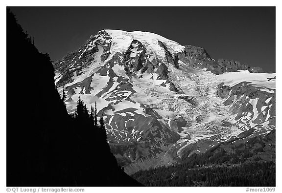 Mt Rainier seen from  Tatoosh range, afternoon. Mount Rainier National Park (black and white)